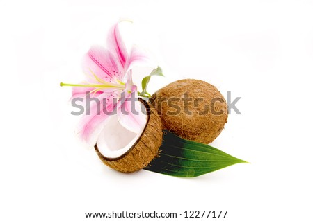 Lilly flower and coco nuts with green leaf