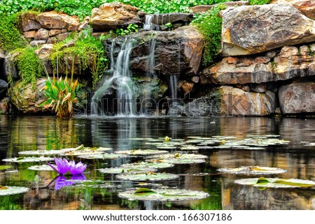 lilly pad and a water fall