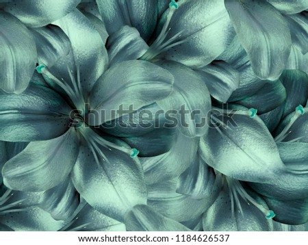 lily flowers. licht turquoise background. floral collage. flower composition. Nature.