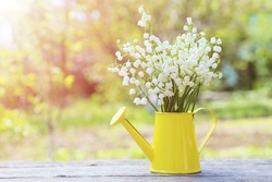 Lily of the Valley in watering can on grey wooden background, outdoors
