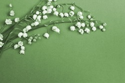 Lily of the valley on blue background