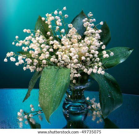 lily of the valley.wet flowers in a glass vase