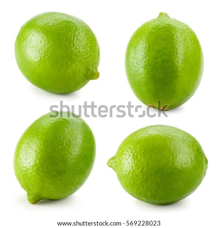 Lime. Fresh citrus fruit isolated on white background. Collection. #569228023