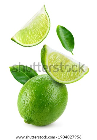 Lime fruit isolate. Falling lime slices with leaves. Flying fruit. Lime whole, half, slice, leaf on white.  Full depth of field.