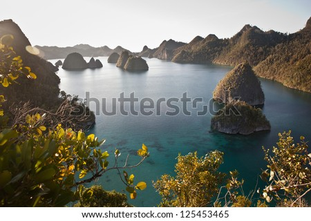Limestone islands in Wayag, Raja Ampat, Indonesia, are now covered by tropical vegetation.  They were once below the waterline and originally made by reef organisms.