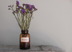 Limonium in latin or statice in english. Dried flowers in old pharmacy jar used now as vase on a natural background. Latin drug name written on the jar. Cozy danish lifestyle and hygge concept.
