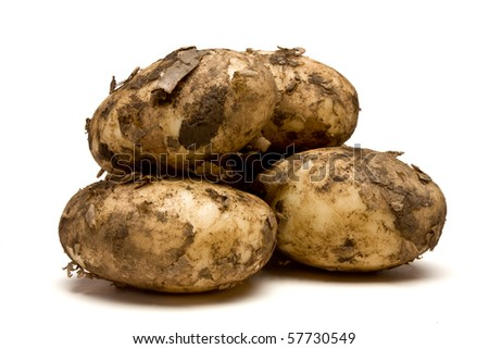 Lincoln new potatoes from low perspective isolated against white background.