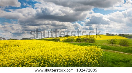 Lincolnshire wolds with oil showing seed rape