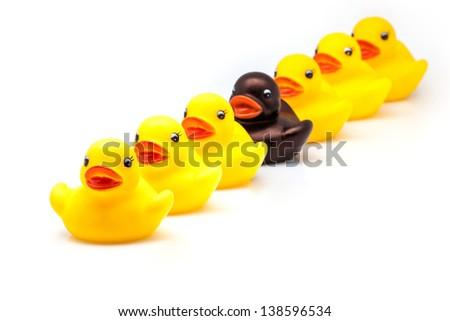line of ducks of gum on white fund