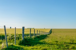 Linear perspective of a boundary fence running through a field on a summer's day