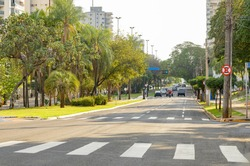 Lined-tree avenue with few cars on the street. Large avenue of a green city. Afonso Pena avenue at Campo Grande - MS, Brazil.