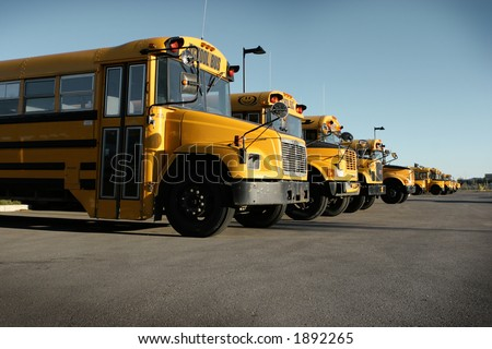 lined up school buses