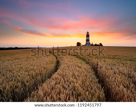 Lines curving through a field of barley towards a red and white stiped lighthouse. #1192451797