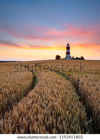 Lines curving through a field of barley towards a red and white stiped lighthouse. #1192451803
