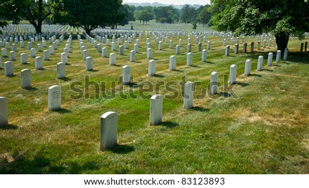 Lines of grave stones stretch into the distance on a summer day in Arlington National Cemetary.