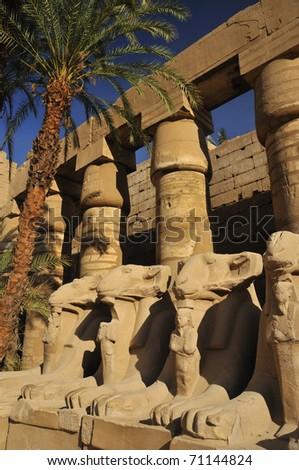 Lines of rams headed sphinxes inside the great courtyard of the Karnak temple in Luxor, Egypt