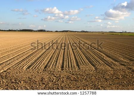 Lines on farm