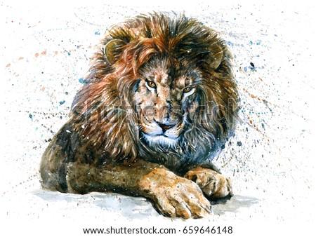 Shutterstock Lion