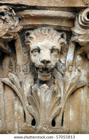 lion capital A lion surrounded by acanthus leaves on the top of a capital on Bristol's City Museum and Art Gallery. - stock photo