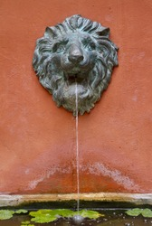 lion fountain on vintage wall