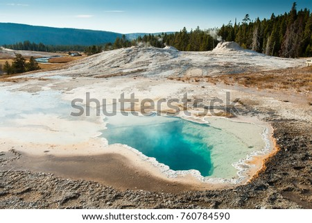 lion geyser group pool with...