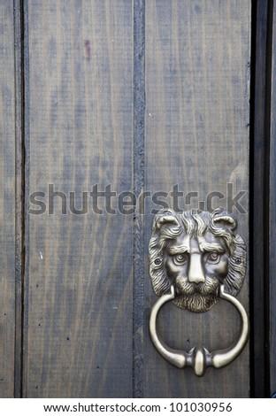 lion knocker and handle