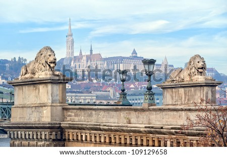 Lion sculptures of the Chain Bridge with Matthias Church in Buda in background, Budapest, Hungary