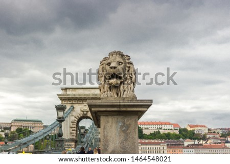 Lion statue. Stone monument. Monument near the castle. Medieval architecture. Historical heritage. Lions of Budapest. Travel to Hungary. European monuments to animals. Muzzle of a lion. #1464548021