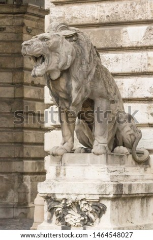 Lion statue. Stone monument. Monument near the castle. Medieval architecture. Historical heritage. Lions of Budapest. Travel to Hungary. European monuments to animals. Muzzle of a lion. #1464548027