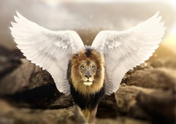 Lion with wings standing on a mountain. King of the world. Power, spirit, freedom, concept.