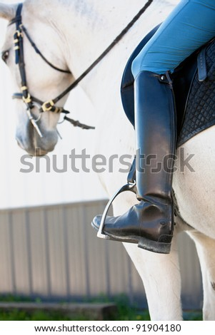 Lipizzaner White Horse with a rider and his/her boots