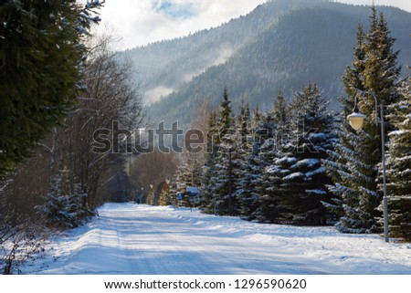 Liptovsky Jan spa resort village at winter: snowy road with street lamps among the mountains. Slovakia. Tourist attraction, tourist destination, spa vacation, winter holiday #1296590620