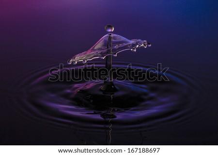 liquid art Water drop collision splash a Liquid Sculpture like a umbrella in purple blue colors