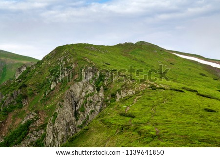 Lit by morning sun wide green valley, hills covered with grass and distant misty mountain rocks under bright blue summer sky and white puffy clouds. Beauty of nature, tourism and traveling concept. #1139641850