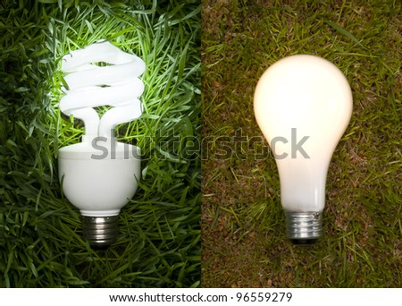 Lit Energy Savings And Incandescent Light Bulb On Grass. Conceptional Image to Show The Impact Of Energy Savings and Incandescent Light Bulbs on The Environment.
