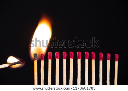 Lit match next to a row of unlit matches. The Passion of One Ignites New Ideas, Change in Others. #1173601783