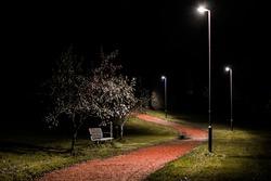 Lit up parkbench at night