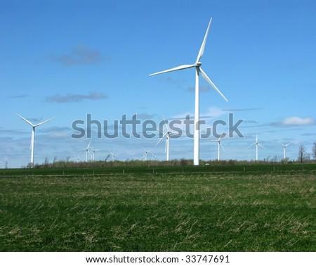 Literally a wind farm - a farm field full of windmills.