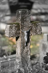 Lithuania, Vandžiogala, cemetery tomb cross
