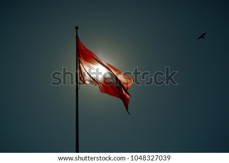 Lithuanian historical flag waving in the wind against blue sky. #1048327039