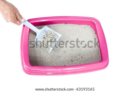 Litter Box and Scoop on isolated white
