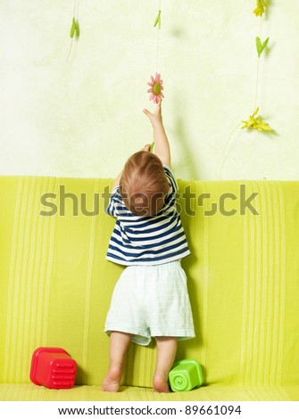 LIttle baby boy from behind as he reaches an object hanging on the wall