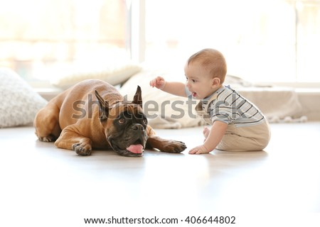 Shutterstock Little baby boy with boxer dog on the floor at home
