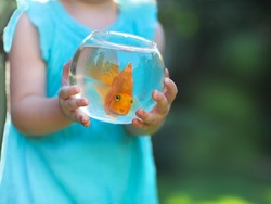 Little baby girl holding a fishbowl with a goldfish on a nature background. Care concept
