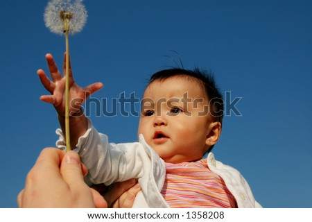 little baby girl with dandelion - stock photo