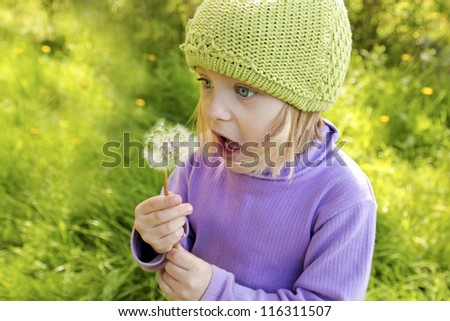 Little beautiful girl blows on a dandelion in the summer.