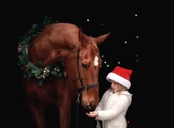 Little beautiful girl posing in christmas outfit next to a big red horse