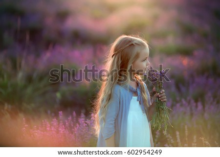 Little beautiful girl with long blond hair, in Provence, in lavender field