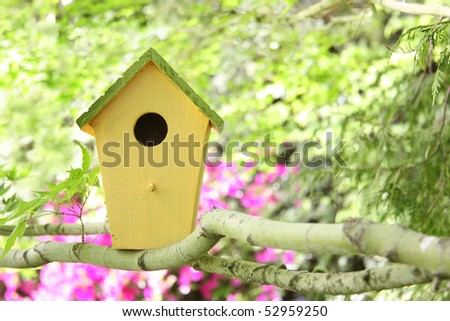 Little birdhouse in a tree.