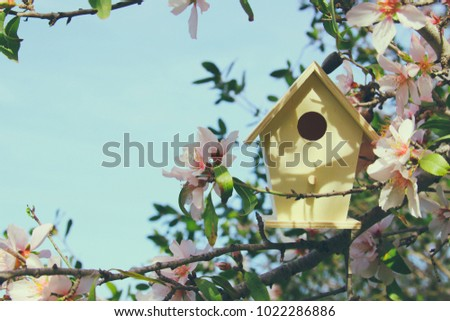 Little birdhouse in spring over blossom cherry tree